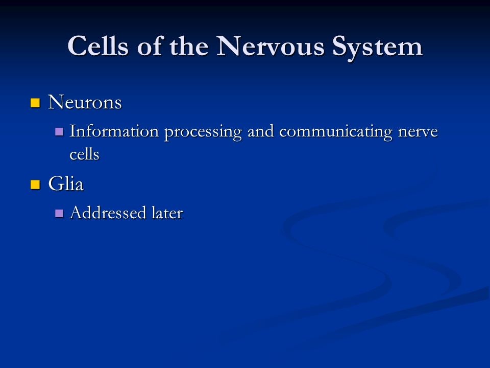 Cells of the Nervous System