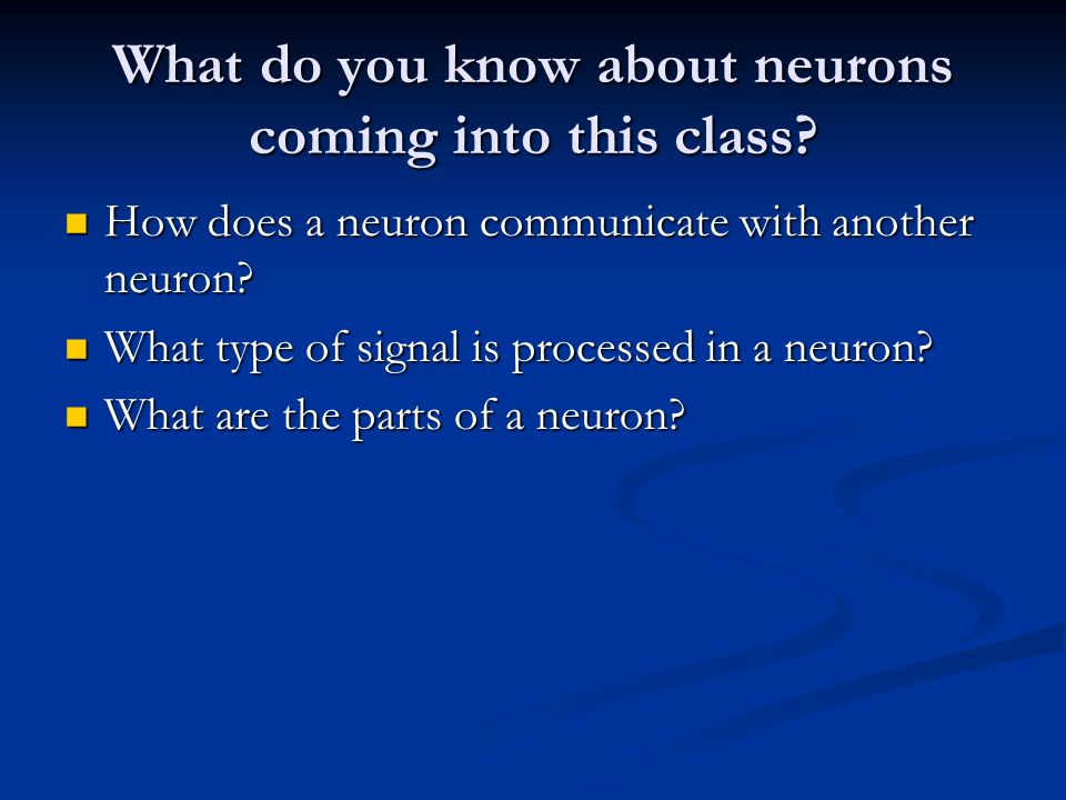 What do you know about neurons coming into this class