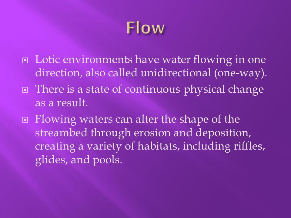 lotic environment