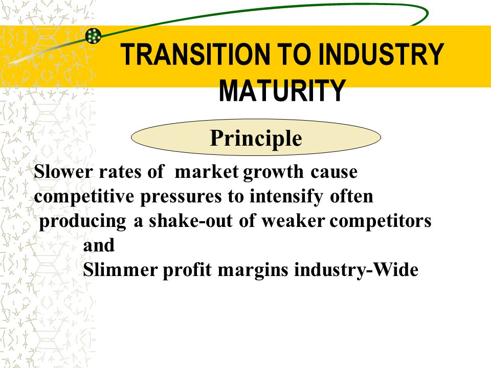 mature industry examples