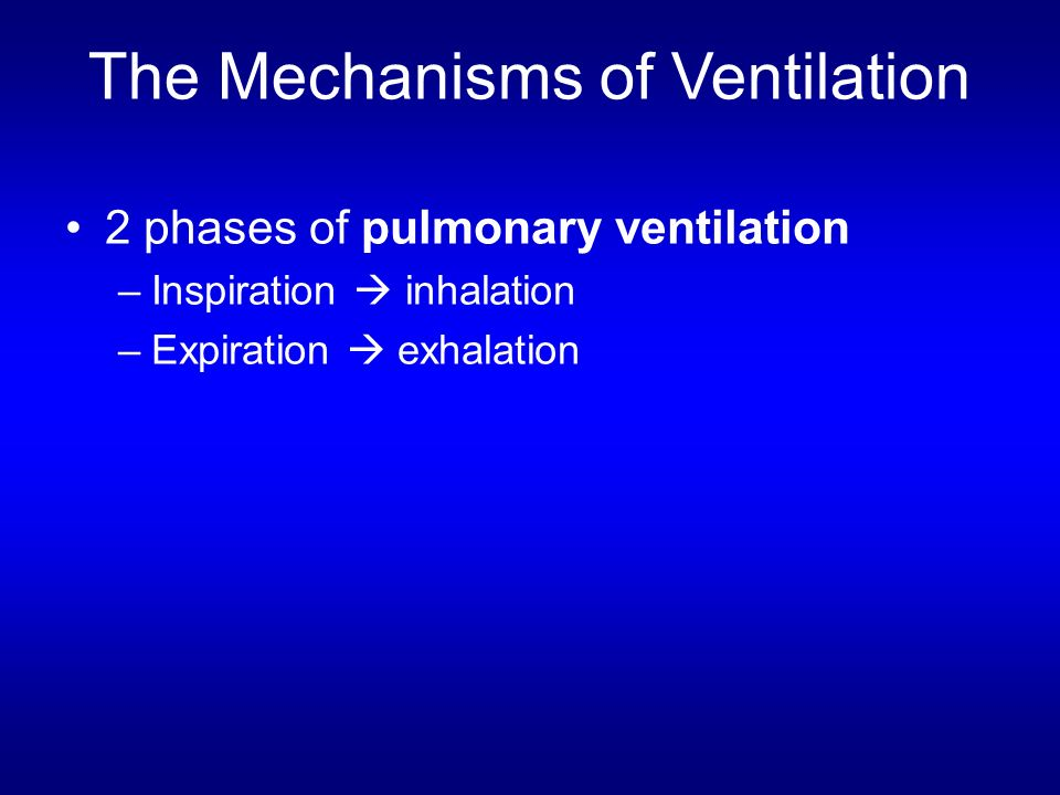 The Mechanisms of Ventilation
