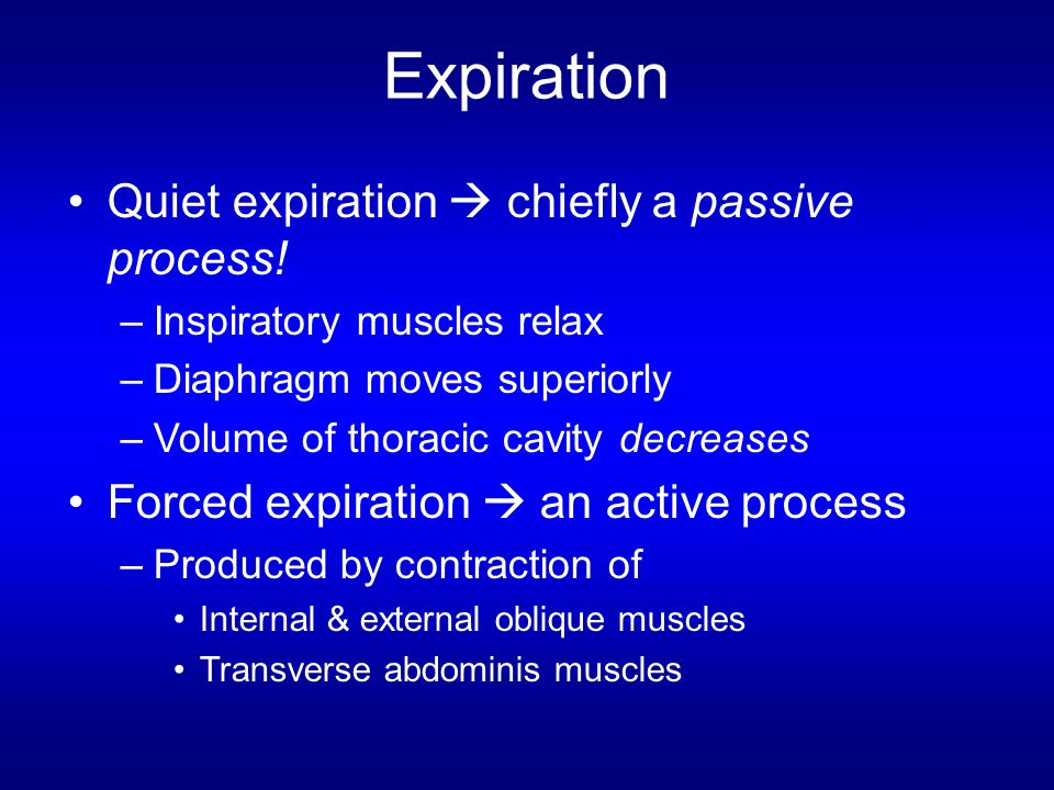 Expiration Quiet expiration  chiefly a passive process!