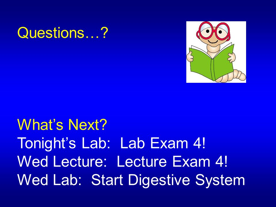 Questions…. What's Next. Tonight's Lab: Lab Exam 4.