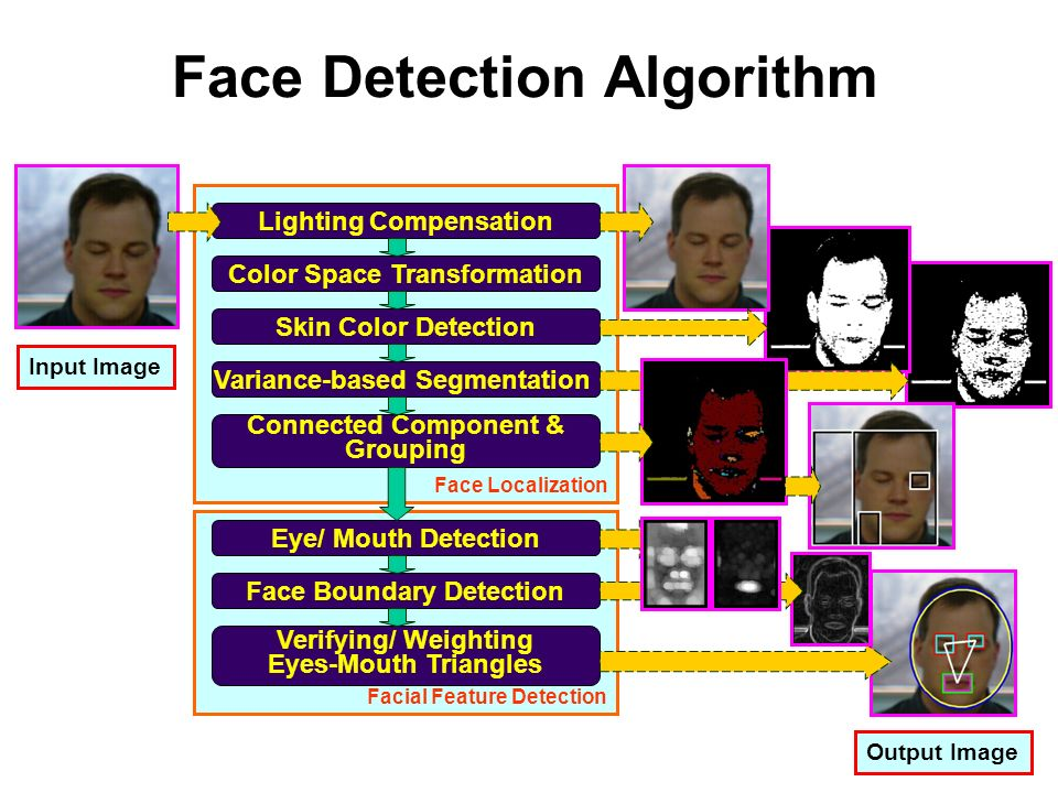 Face Recognition: An Introduction - ppt video online download