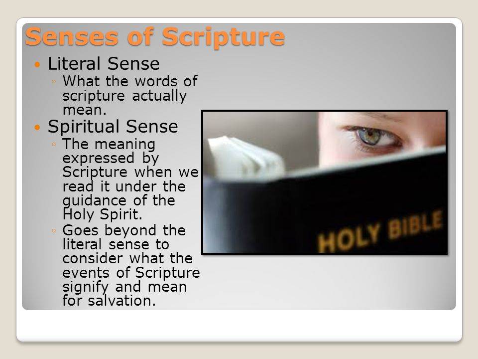 Knowing God Reason and Revelation - ppt download