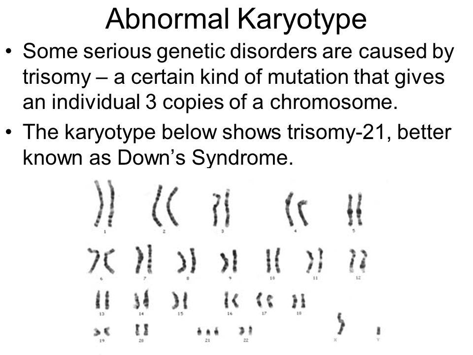 A Chromosome Study Please Pick Up 1 Set Of Chromosomes