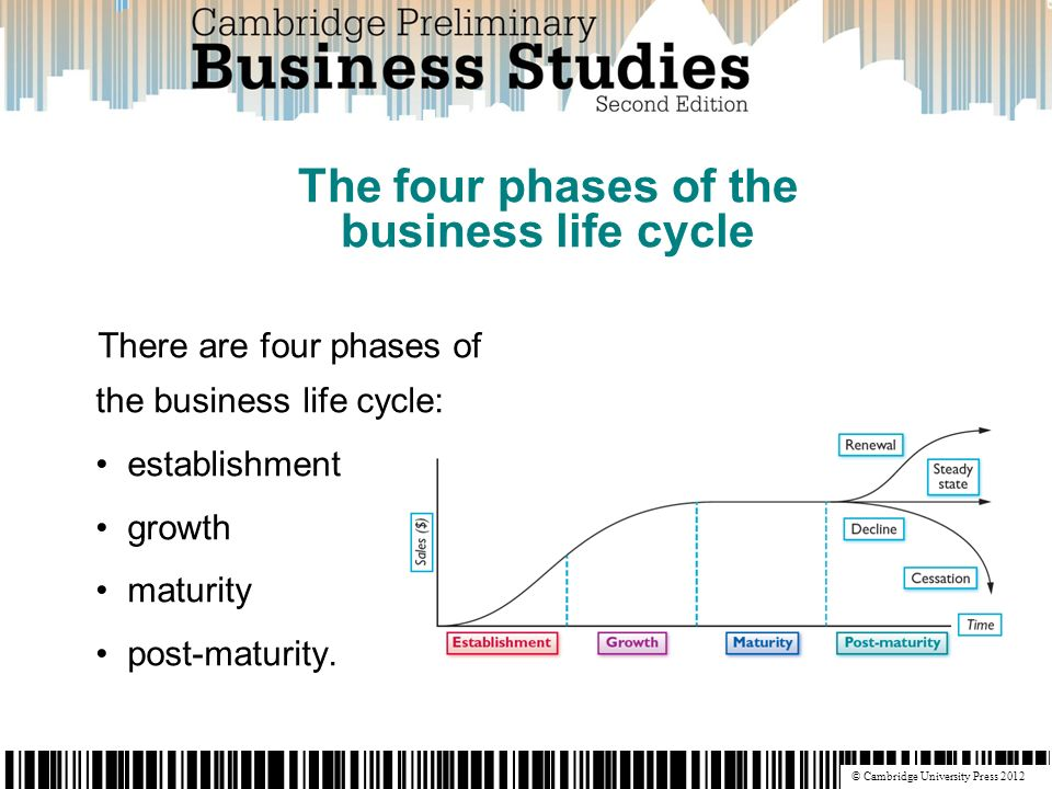 business life cycle establishment
