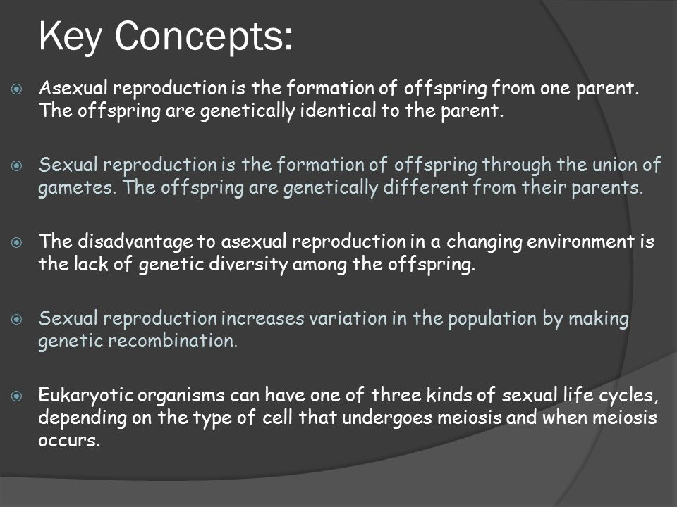 Source of genetic variation in asexual reproduction the offspring