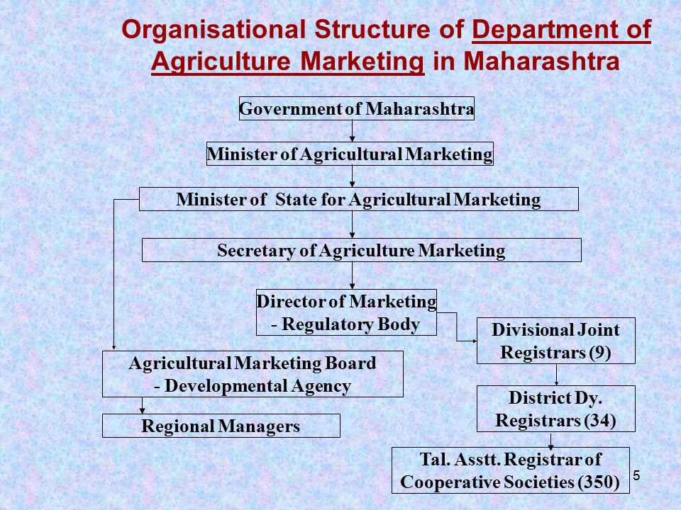 Agricultural Marketing Board, Pune, Maharashtra, India - ppt download
