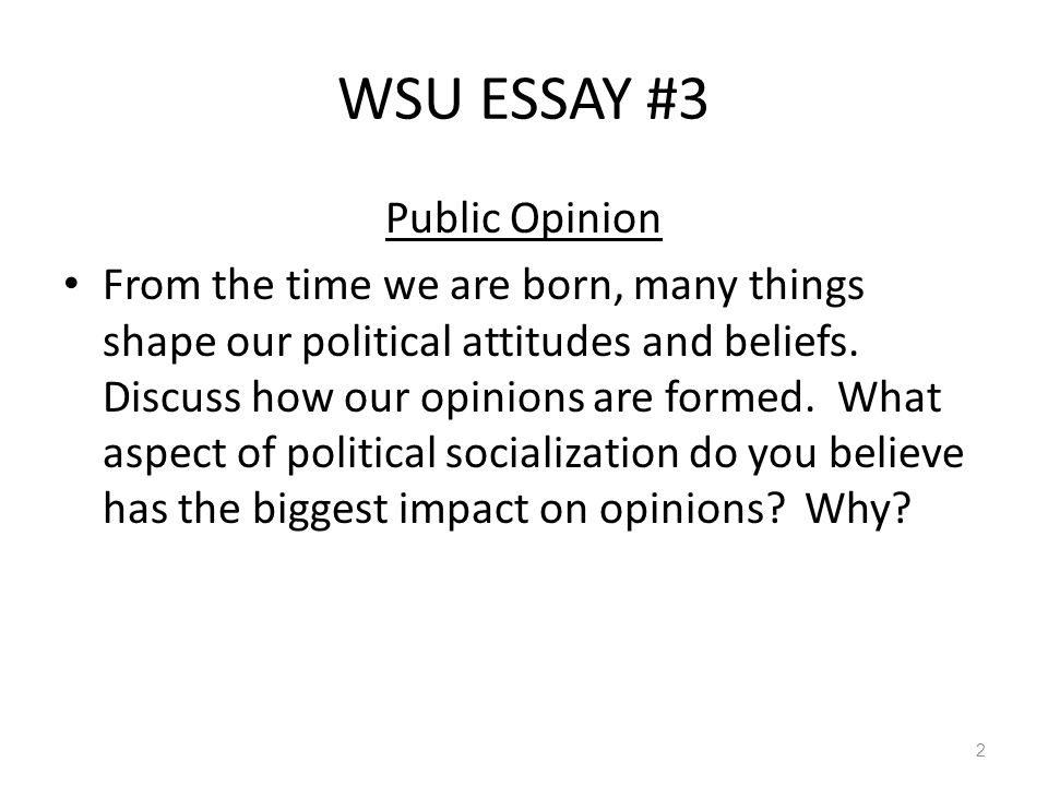 public statements of opinion essay This statement is best seen as a single, complete sentence containing the main idea of the entire composition with at least three (3) patterns by which you intend to develop and support that subject you could not write a very good or insightful essay, for example, if your thesis was the hyundai is a great car.