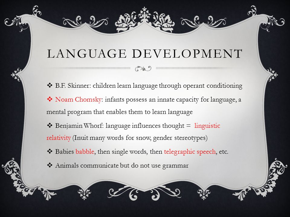 How do we learn a language? What factors influence the ...