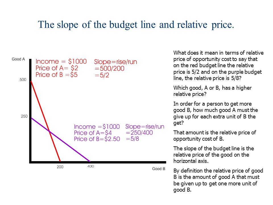 what does a budget line show