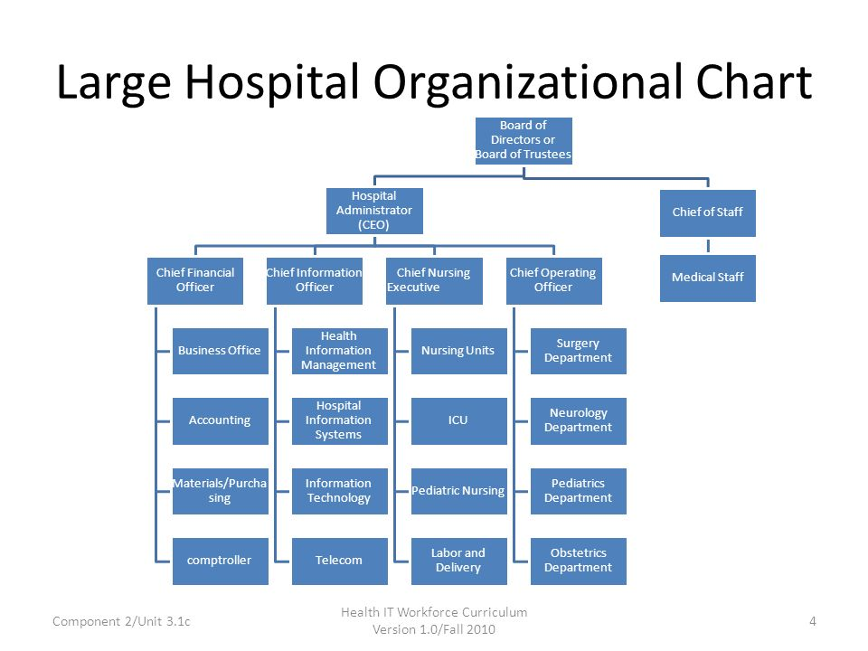 Large Hospital Organizational Chart
