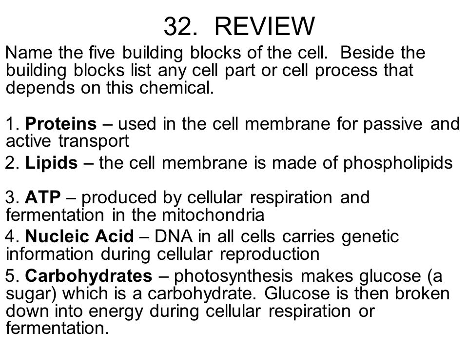 cell reproduction study guide Promoters don't damage a cell's dna or affect non-initiated cells, and it takes numerous exposures to a promoter over a long time to induce malignant transformation of a cell page 5 question 21 21.