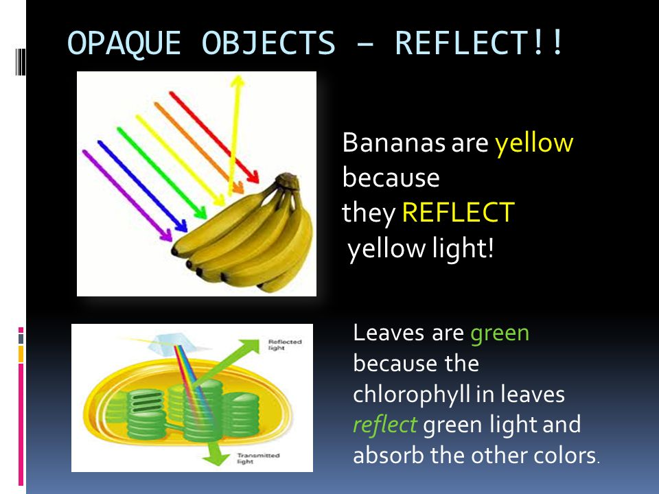 OPAQUE OBJECTS – REFLECT!!