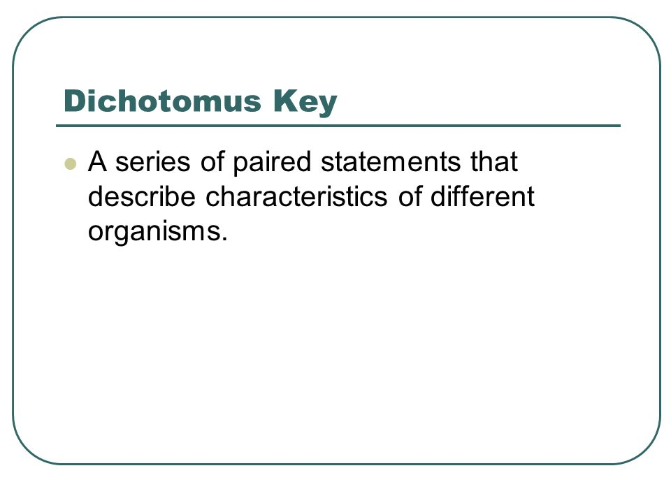 Dichotomus Key A series of paired statements that describe characteristics of different organisms.