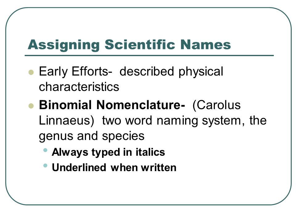 Assigning Scientific Names