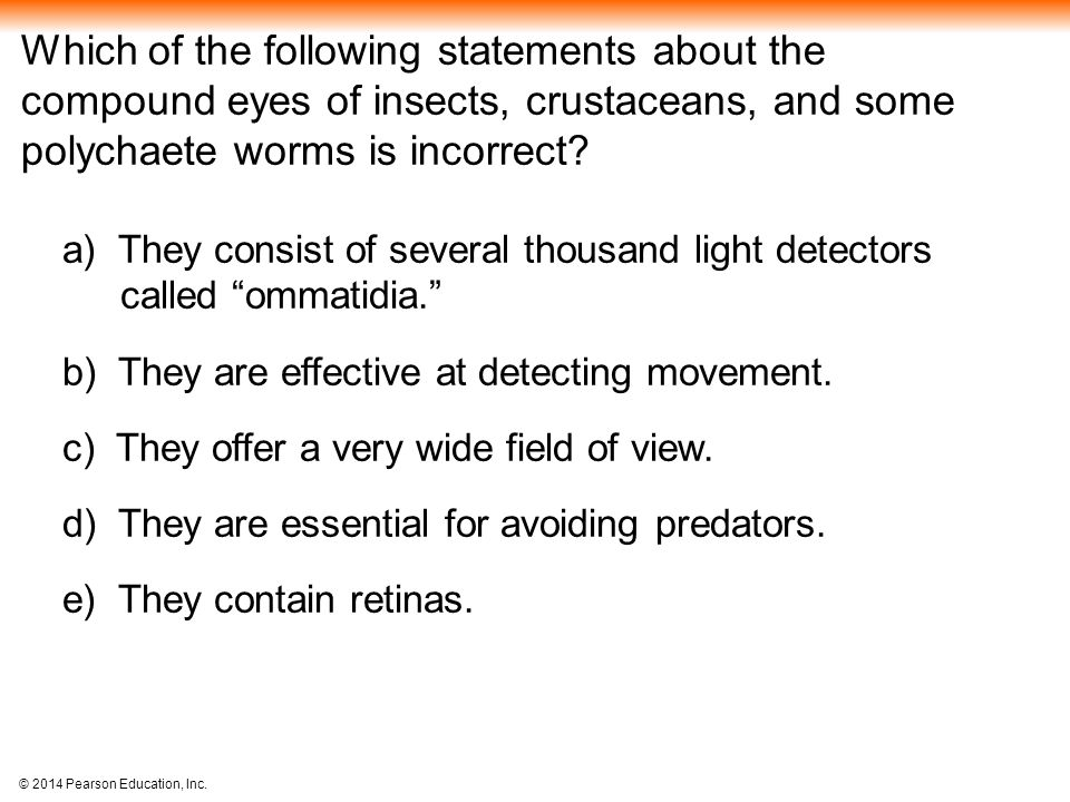 which of the following statements about online surveys is true sensory and motor mechanisms ppt video online download 928