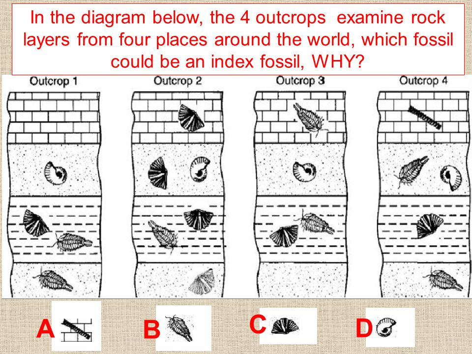 Aim How Do Geologist Break Up Geologic Time Ppt Video Online