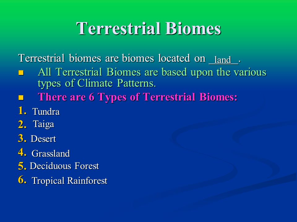 Terrestrial Biomes Terrestrial biomes are biomes located on _____.