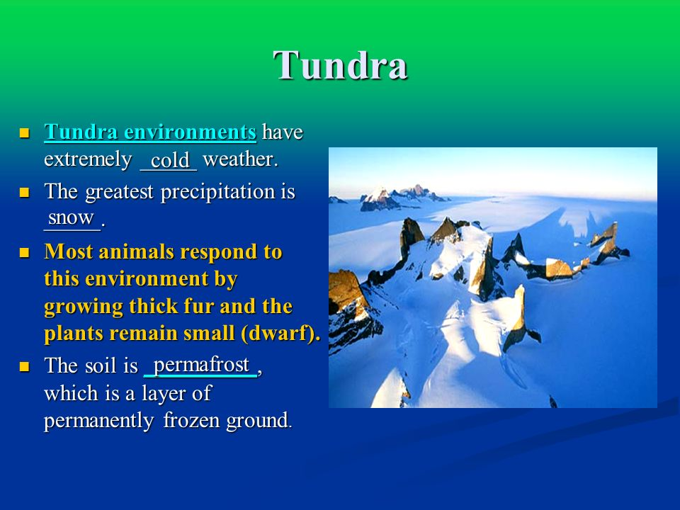 Tundra Tundra environments have extremely _____ weather.