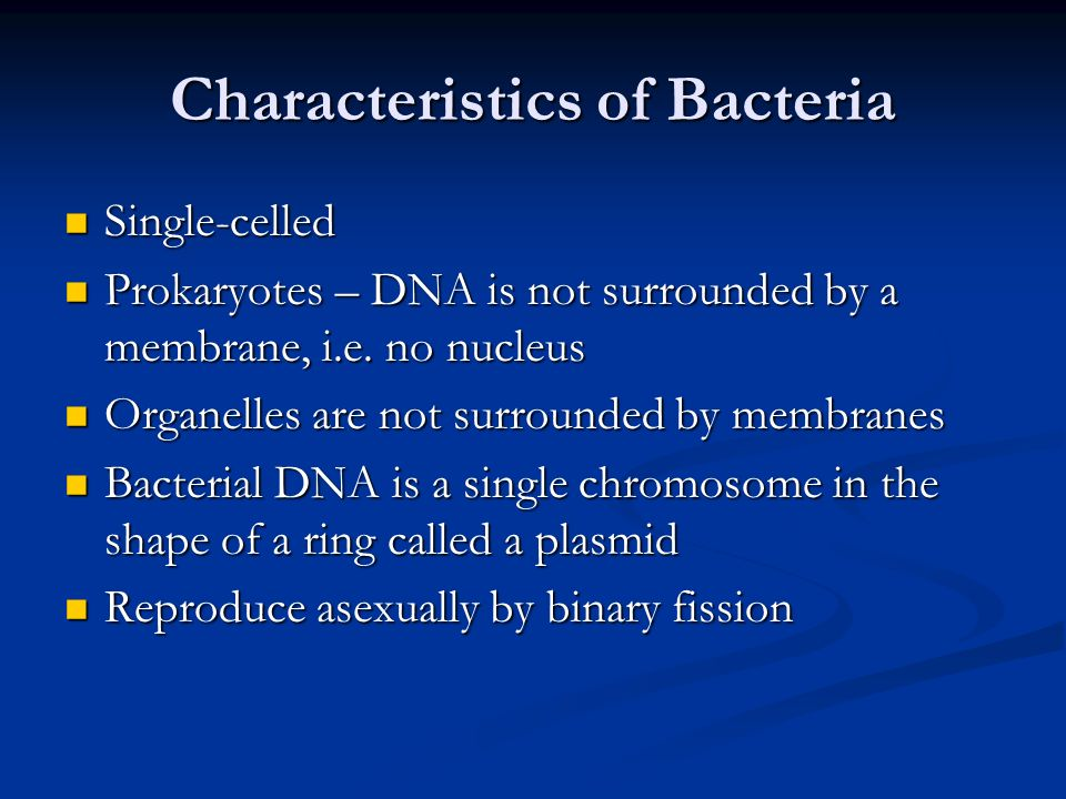 Asexual reproduction bacteria called clostridium