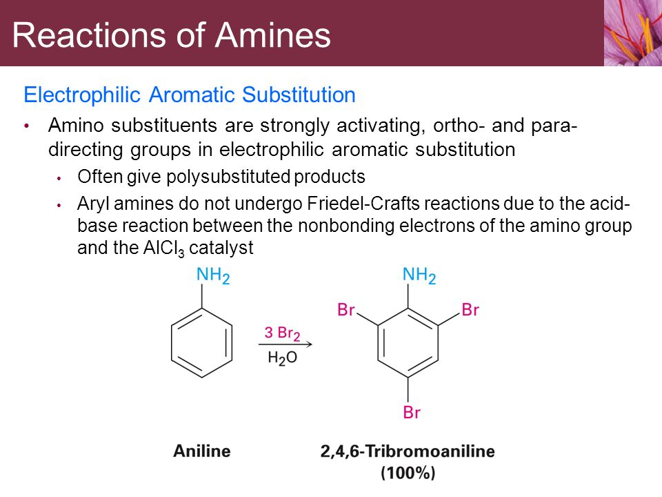 Amines and Heterocycles - ppt video online download