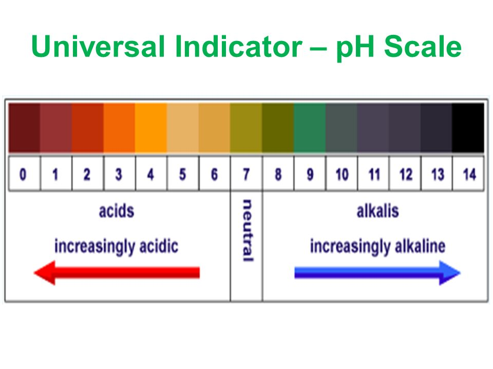 ph indicators essay Product reviews disclaimer: grainger is neither responsible for, nor does it endorse, the content of any product review or statement posted any statements posted constitute the statements of the poster and are not the statements of grainger.