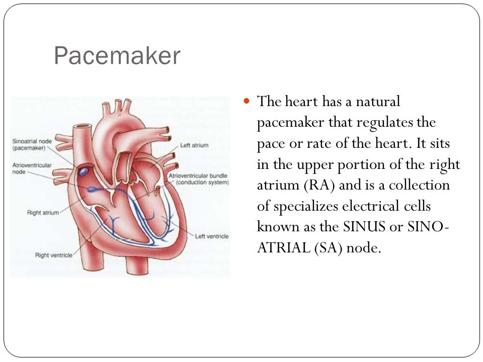 what is the natural pacemaker of the heart