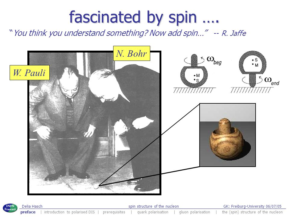fascinated by spin …. N. Bohr W. Pauli