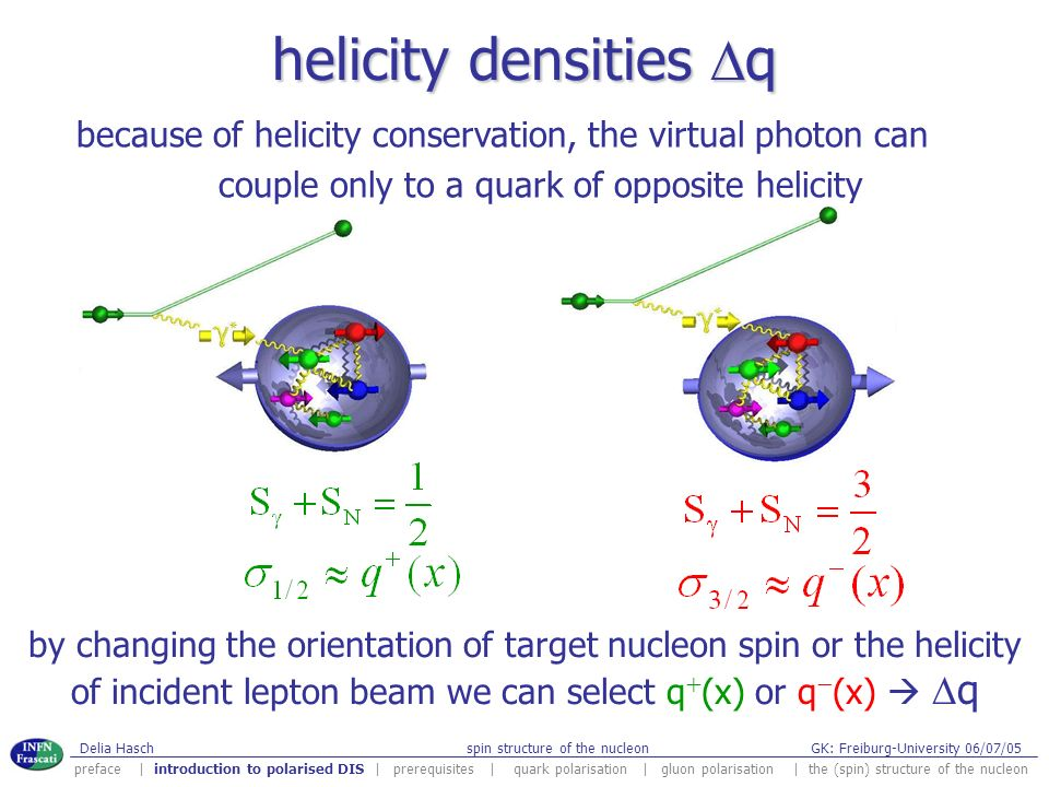 helicity densities Dq because of helicity conservation, the virtual photon can. couple only to a quark of opposite helicity.