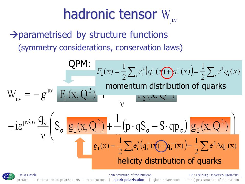 hadronic tensor parametrised by structure functions