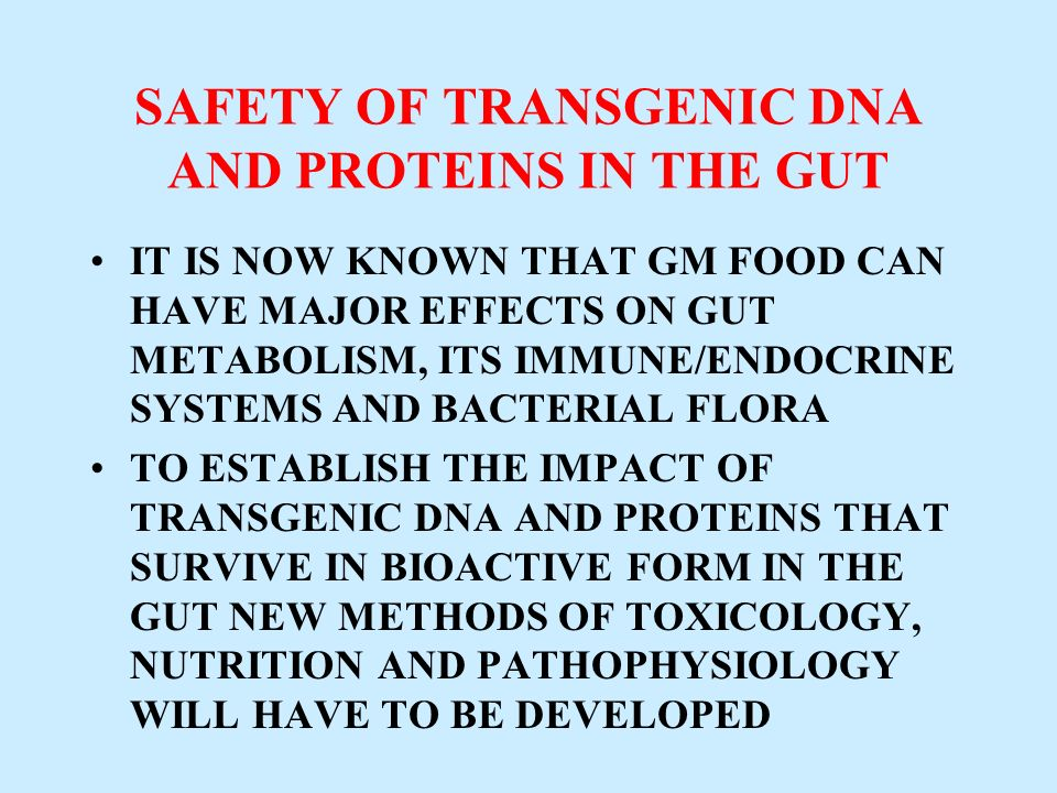SAFETY OF TRANSGENIC DNA AND PROTEINS IN THE GUT