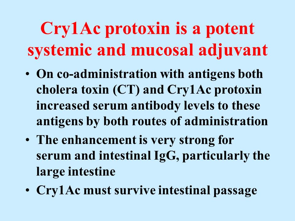 Cry1Ac protoxin is a potent systemic and mucosal adjuvant