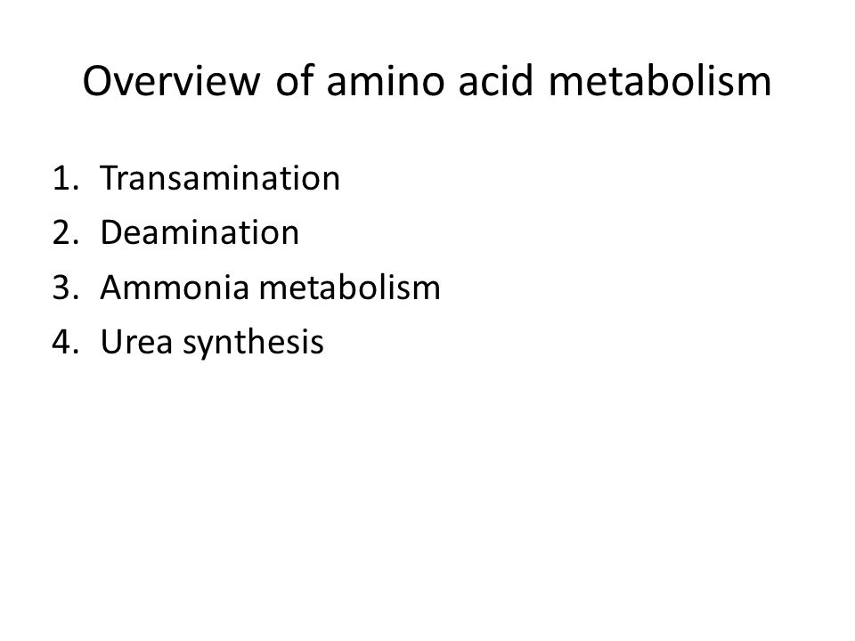 Dr saidunnisa professor of biochemistry ppt download overview of amino acid metabolism fandeluxe Images