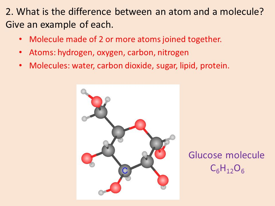 1 What Is The Difference Between An Element And A Compound Ppt