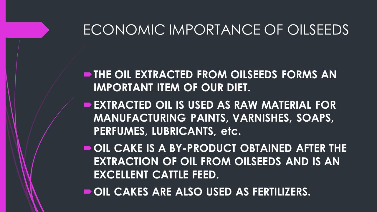 OILSEEDS ECONOMIC IMPORTANCE OF OILSEEDS MAJOR OILSEEDS