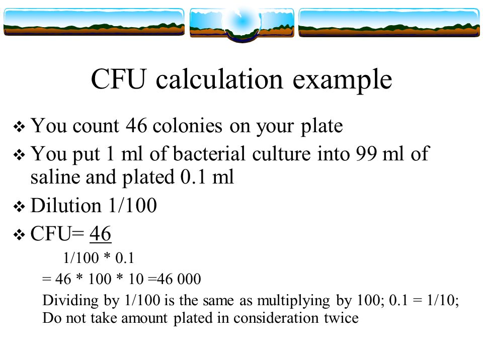 Isolation Of Bacteria By Dilution Plating Ppt Video Online