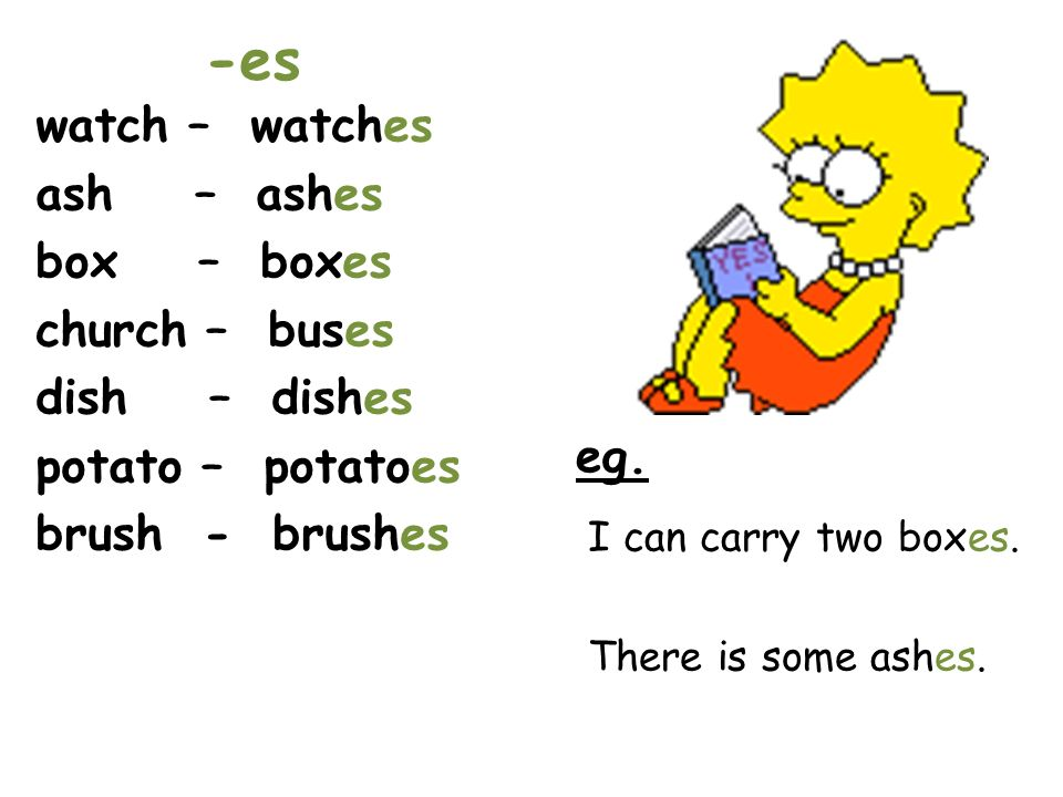 -es watch – watches ash – ashes box – boxes church – buses dish – dishes potato – potatoes brush - brushes