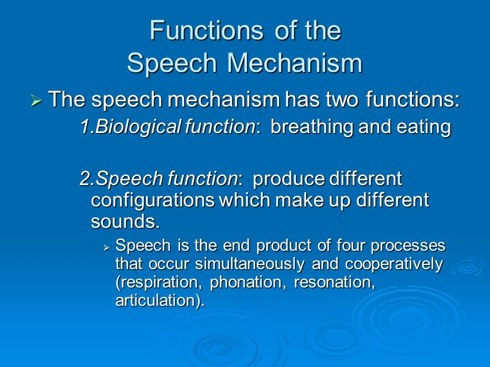 Systems Of Speech Anatomy Of Articulation Ppt Video Online Download