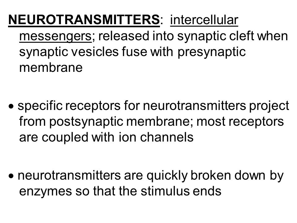 NEUROTRANSMITTERS: intercellular messengers; released into synaptic cleft when synaptic vesicles fuse with presynaptic membrane