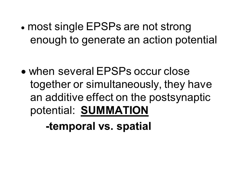  most single EPSPs are not strong enough to generate an action potential