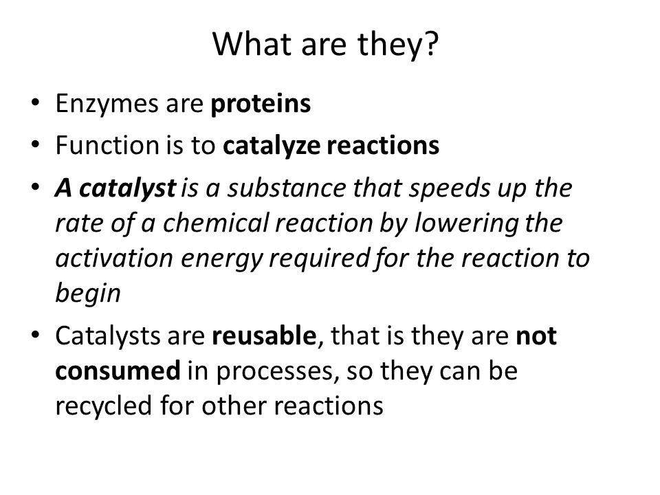 catalytic protein substance