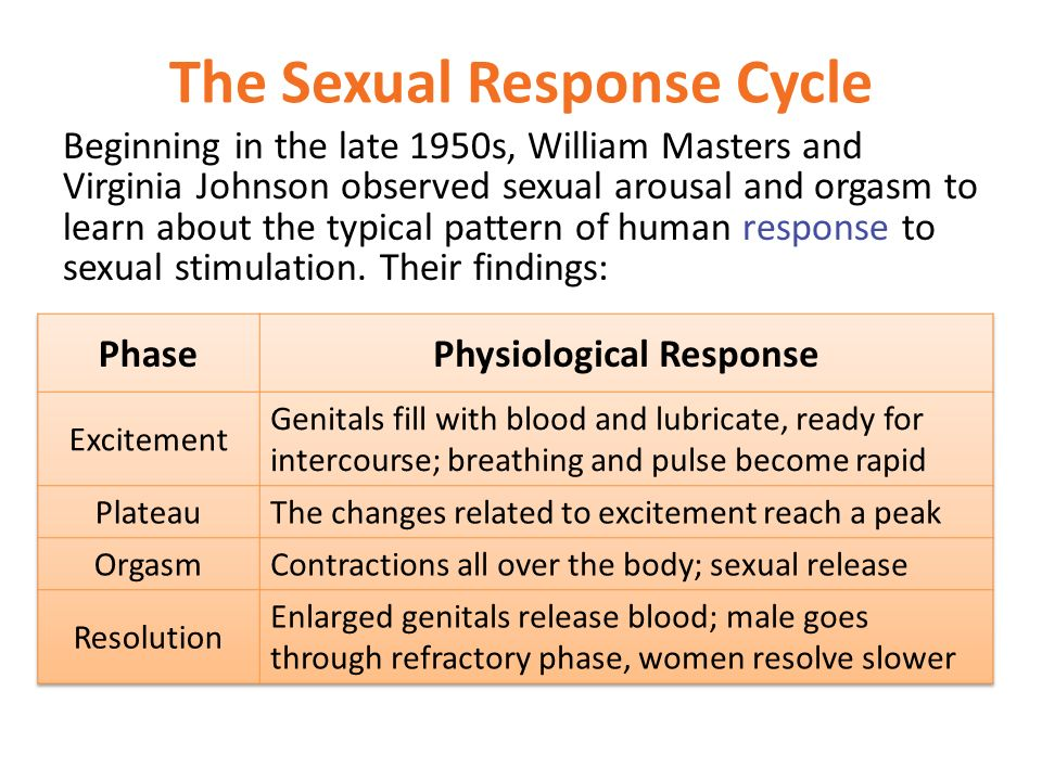 The sexual response cycle on vimeo