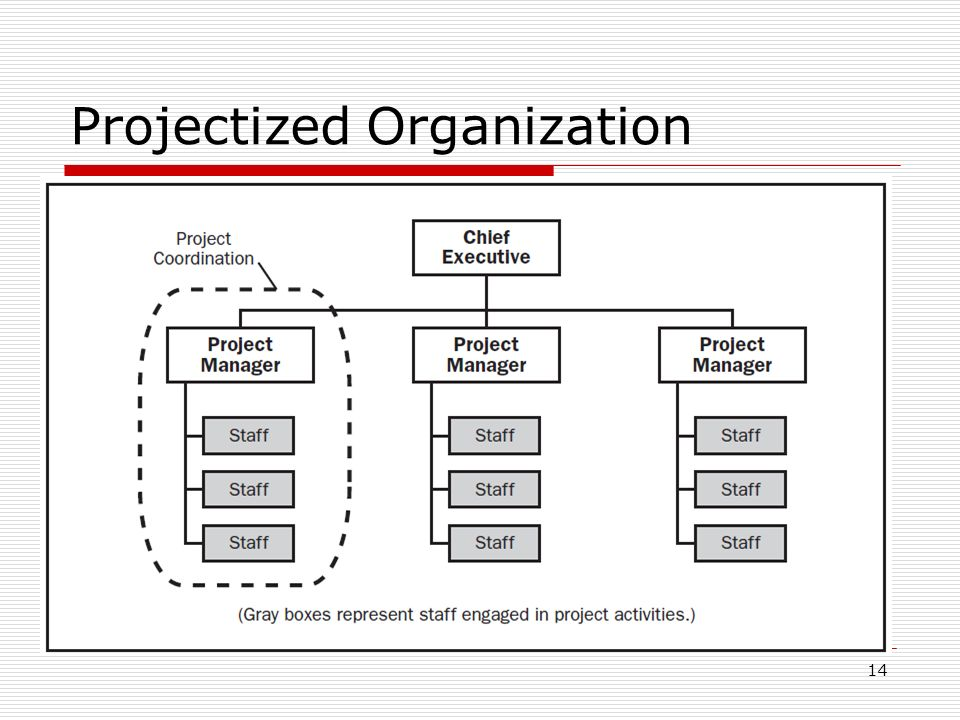 H Nhv besides Org further Projectized Organization further Management Typical Orgcharts Hierarchical Org Chart in addition Teva Personnel Tree. on functional organizational structure chart