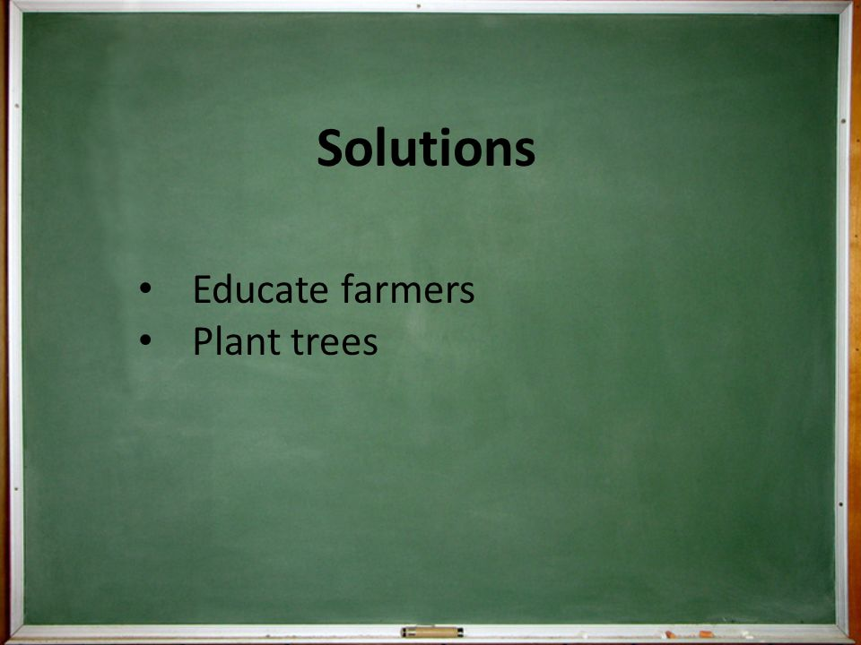 Solutions Educate farmers Plant trees