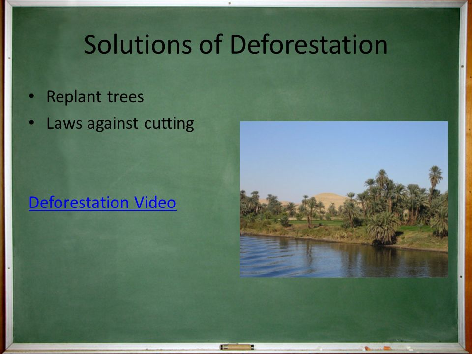 Solutions of Deforestation