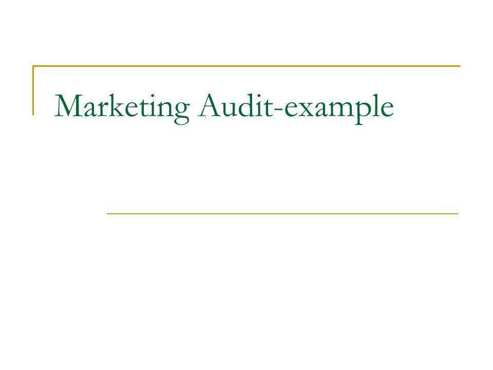 8 marketing audit example