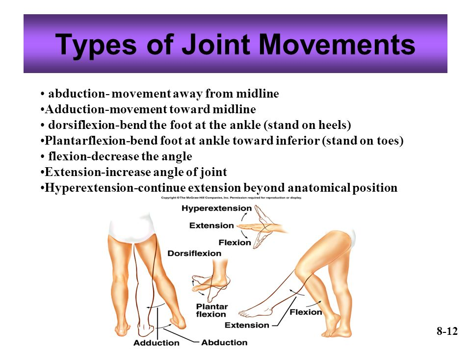 Joints Or Articulations Ppt Video Online Download