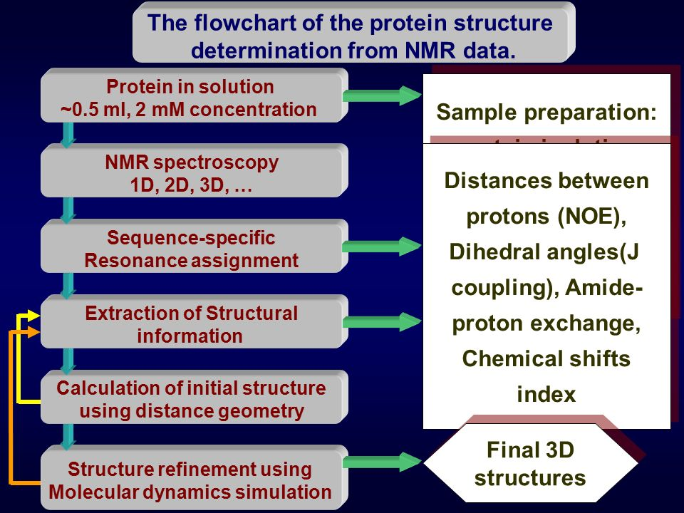 I Nmr Theory And Experiments Ppt Video Online Download